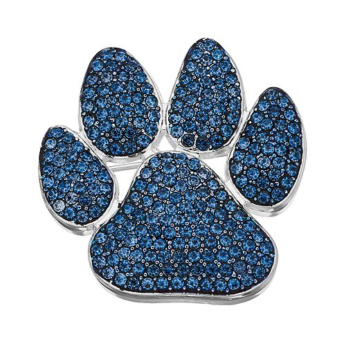 Navy/Silver Tone Paw Pin