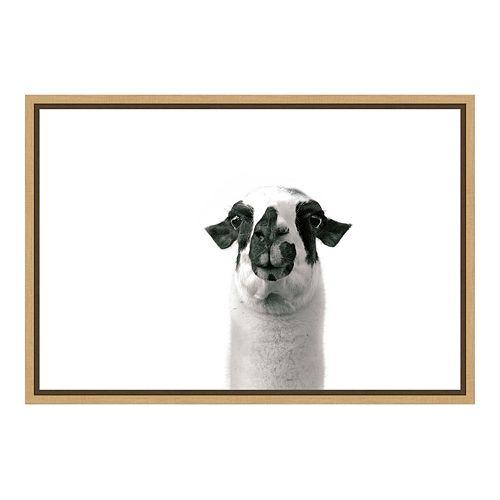 Amanti Art Lovable Llama II Canvas Framed Wall Art
