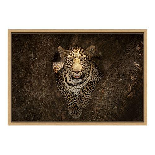 Amanti Art Leopard Resting Canvas Framed Wall Art