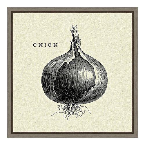 Amanti Art Vegetable Onion Canvas Framed Wall Art
