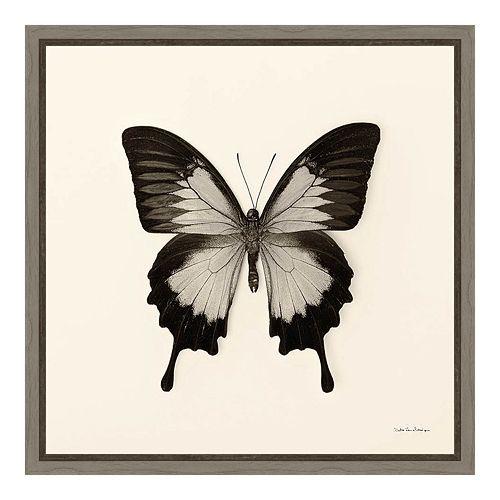 Amanti Art Butterfly III Canvas Framed Wall Art