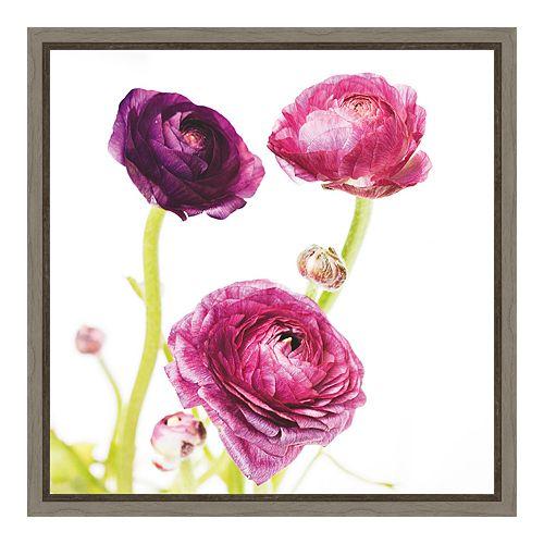 Amanti Art Spring Ranunculus I Canvas Framed Wall Art