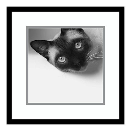 Amanti Art Hey! Framed Wall Art