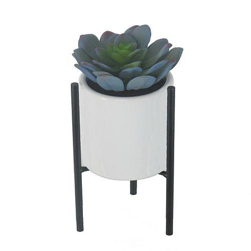 SONOMA Blue Faux Succulent in Ceramic Vase