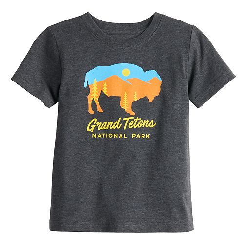 Toddler Boy Family Fun™ National Park Graphic Tee