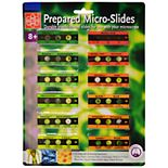 Edu Toys Prepared Microscope Micro-Slides - 12 Slides w/36 Assorted Specimens