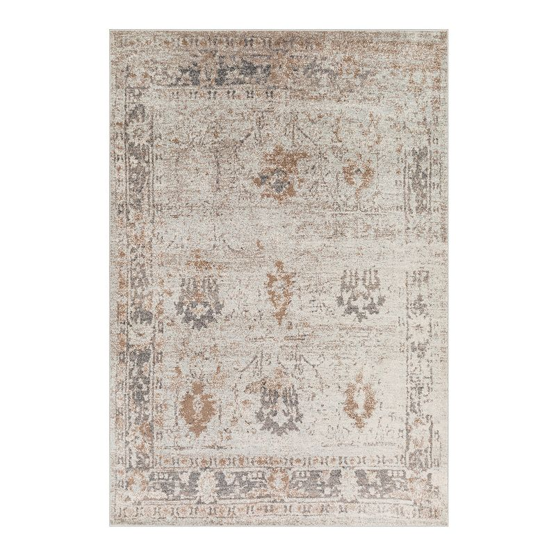 Decor 140 Lyra Distressed Traditional Rug, Grey, 5X7 Ft