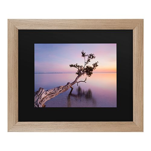 Trademark Fine Art Water Tree Xv Framed Art