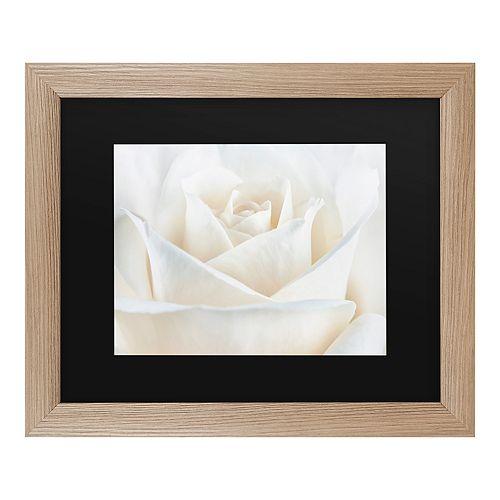 Trademark Fine Art Pure White Rose Framed Art