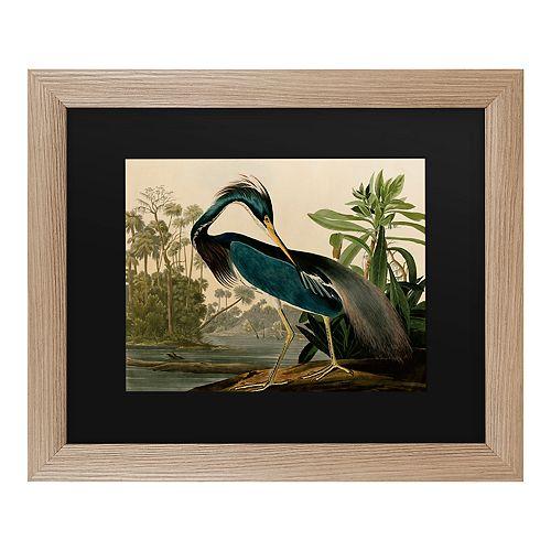 Trademark Fine Art Louisiana Heron Framed Art