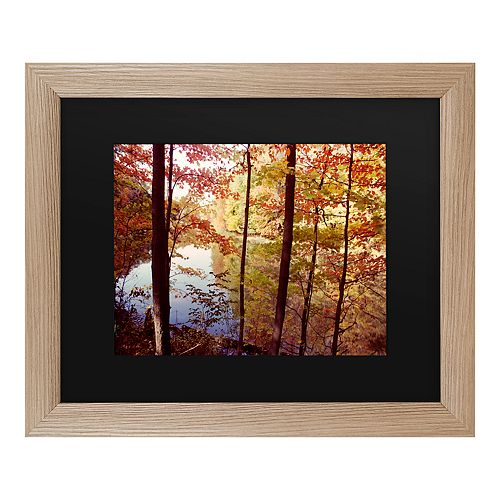 Trademark Fine Art A Secret Pond Framed Wall Art