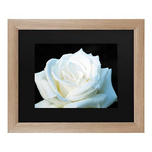 Trademark Fine Art White Rose II Framed Wall Art