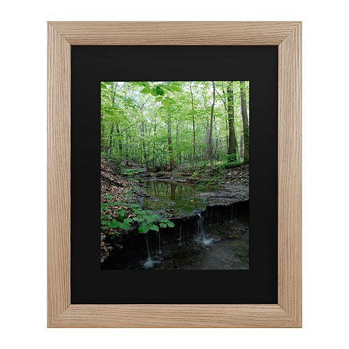 Trademark Fine Art Tiny Forest Falls Framed Wall Art
