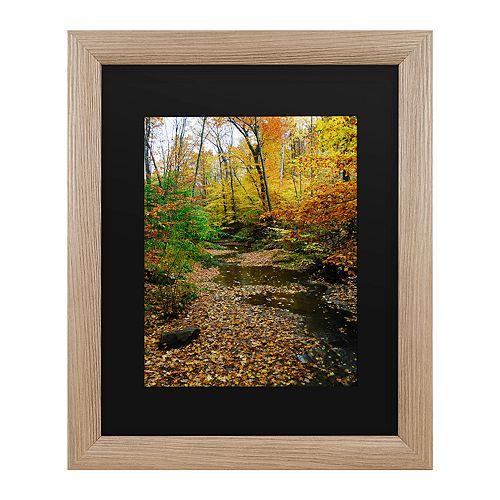 Trademark Fine Art Autumn Stream Framed Wall Art