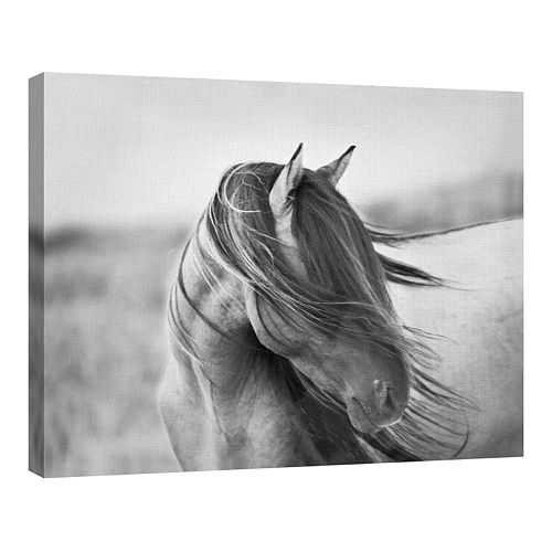 Fine Art Canvas Fine Art Canvas Fierce Grace by Tony Stromberg Wall Art