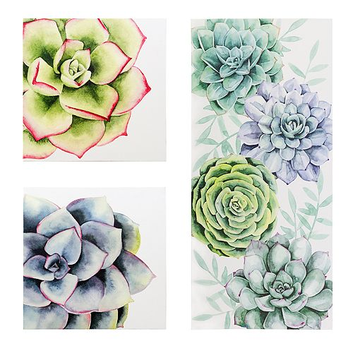 Kiera Grace Raccow Succulent Wall Art 3-piece Set
