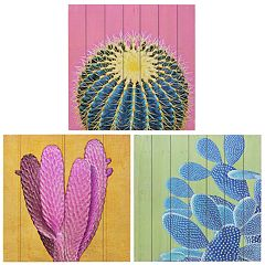 Kiera Grace Garcia Cactus Wall Art 3-piece Set