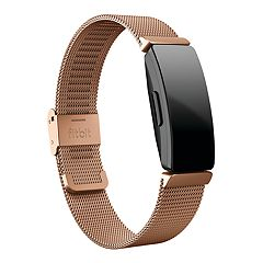 effd4869cc11 Fitbit Inspire Stainless Steel Mesh Accessory Band