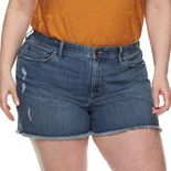 Plus Size EVRI Fit Solutions Denim Shorts