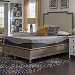 Comfort Escape Ebony 12-in. Ebonite Memory Foam Mattress