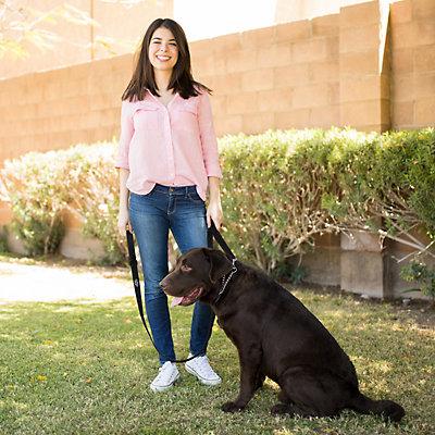 PetMaker Dual Handle Dog Leash