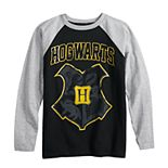Boys 8-20 Harry Potter Hogwarts Raglan Tee
