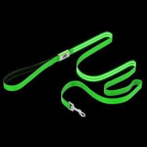 PetMaker LED Light Up Dog Leash