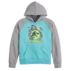 Boys 8-20 Jurassic World Graphic Hoodie
