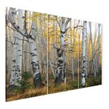 Misty Morning Wall Art - 3 piece Wrapped Canvas