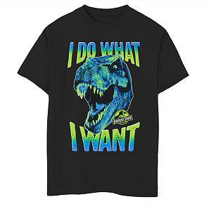 Boys' 8-20 Jurassic Park I Do What I Want Graphic Tee