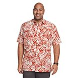 Big & Tall Van Heusen Air Classic-Fit Button-Down Shirt