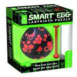 Smart Egg Labyrinth Puzzle - Biotech Design