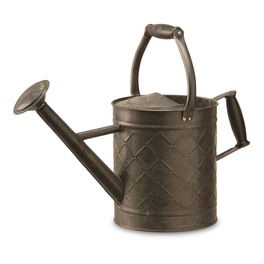 National Tree Company Distressed Watering Can