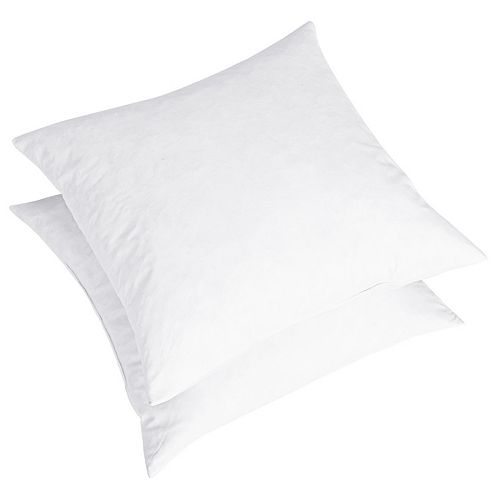 Dream On Euro Feather Pillow Insert