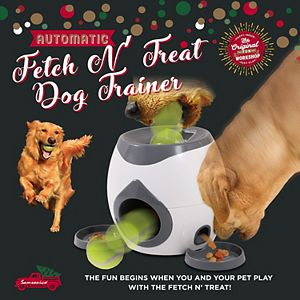 Original Fun Factory Automatic Fetch & Treat Dispenser