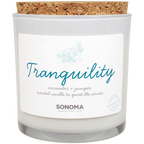 SONOMA Goods for Life™ SPA Tranquility Cucumber & Juniper 13-oz. Candle Jar