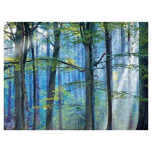 Fine Art Canvas Enchanted Forest Canvas Wall Art