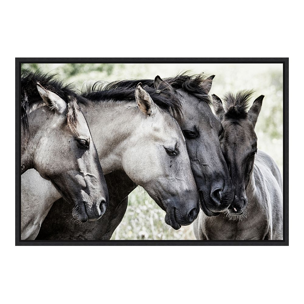 Amanti Art Four Konik Horses Framed Canvas Wall Art