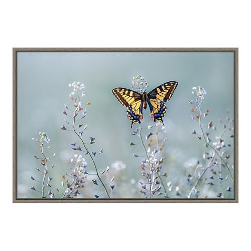 Amanti Art Swallowtail Beauty Framed Canvas Wall Art