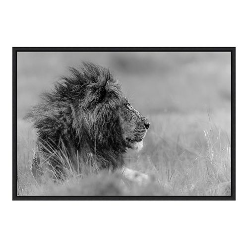 Amanti Art The King Is Alone Framed Canvas Wall Art