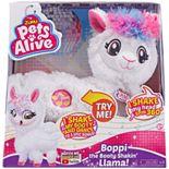Girl's Zuru Pets Alive-Robotic-Series 1 Llama Window Box