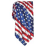 Men's Land of Liberty American Flag Tie