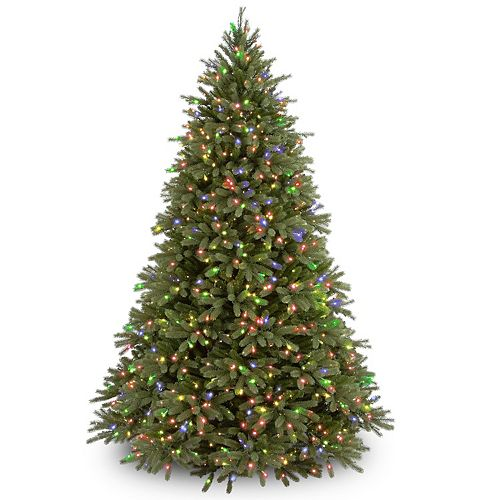 National Tree Company 9 ft. Jersey Fraser Fir Tree with Multicolor Lights