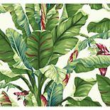 York Wallcoverings Tropics Banana Leaf Removable Wallpaper