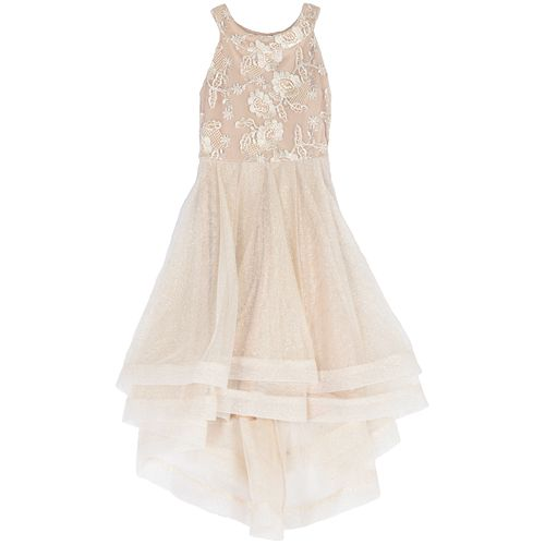 Girls' Speechless Embroidered Mesh to Tull Dress