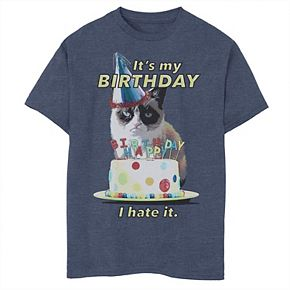 Boys 8-20 Grumpy Cat I Hate My Birthday Cake Party Graphic Tee