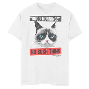 Boys 8-20 Grumpy Cat No Good Morning No Such Thing Graphic Tee