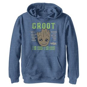 Boys 8-20 Marvel Guardians of Galaxy 2 Groot Skills Hoodie