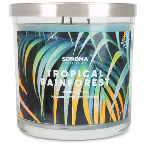 SONOMA Goods for Life™ 14-oz. Tropical Rainforest Triple Pour Candle