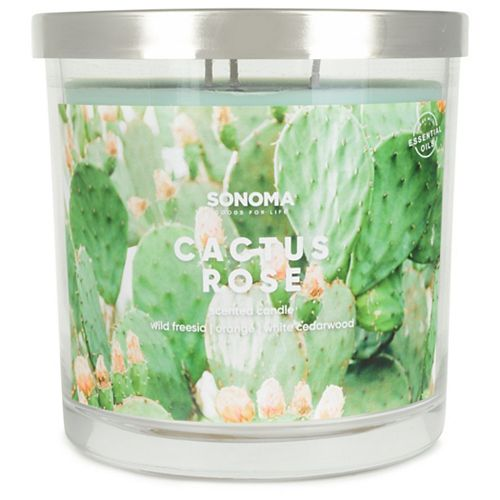 SONOMA Goods for Life™ 14-oz. Cactus Rose Triple Pour Candle
